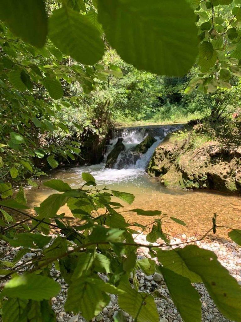 Le parc départemental de la Brague